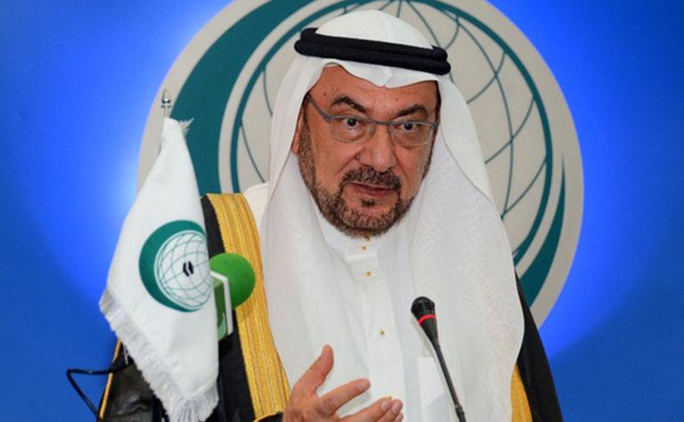 رئيس التعاون الاسلامي والسيستاني بحثا مواجهة العنف الطائفي