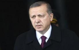 وزير إماراتي: أنقرة لن تقود العالم العربي